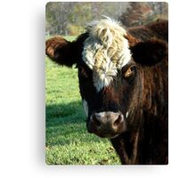Don't even think about cow tipping Canvas Print