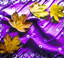 Newly Fallen Leaves by MSRowe Art and Design