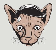 Hairless Cat Denial by Stark-Design