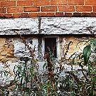 Secret Window by tanya breese