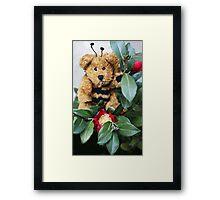 Bumble Bear Framed Print