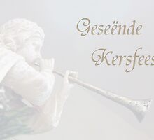 Geseënde Kersfees by Paraplu Photography