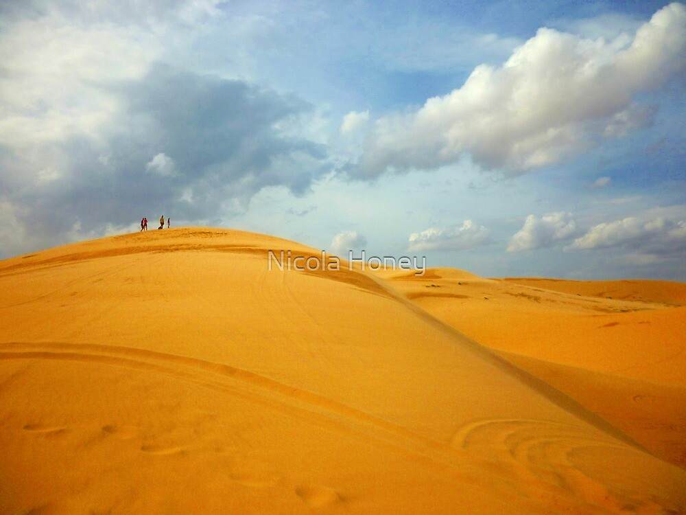 sand dunes by Nicola Honey