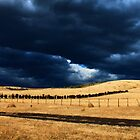 Summer storm brewing by Izgab