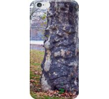 Trees Planted by the River iPhone Case/Skin