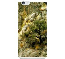 Living Stone iPhone Case/Skin