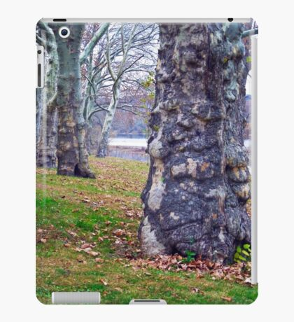 Trees Planted by the River iPad Case/Skin