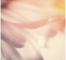 Softest Soft by KBritt