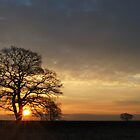 Early in Mobberley by DMHotchin