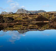 Lingmoor Tarn - Cumbria by David Lewins