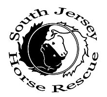 South Jersey Horse Rescue Circle Photographic Print