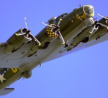 Sally B by merlinonline