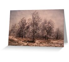 Frosted Trees Greeting Card
