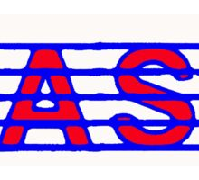 Bass Red White & Blue  II Sticker