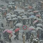 Shibuya Crossing on a Snowing Day by kianhwee