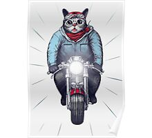 Cafe Racer Cat Speedo Poster