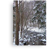 Mill Creek Meandering Canvas Print