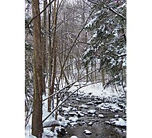 Mill Creek Meandering Photographic Print