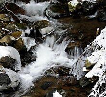 by the creeks edge~ by Brandi Burdick