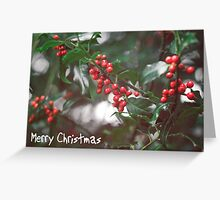 Christmas Berries I Greeting Card