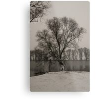 winter scene I Metal Print