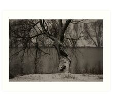 winter scene II Art Print