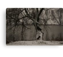 winter scene II Canvas Print