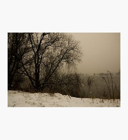 winter scene III Photographic Print