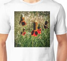 Mexican Hats Unisex T-Shirt