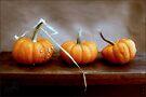 Three Pumpkins Blank Card by LouiseK