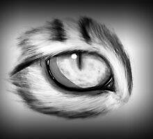 Cat's eye by Jessirena