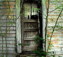 Back Door at Cousin Sack's House by Patito49