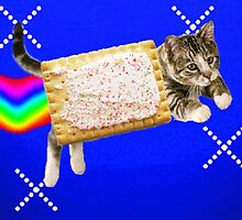Grittily Realistic Nyan Cat by Lutubert