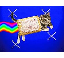 Grittily Realistic Nyan Cat Photographic Print