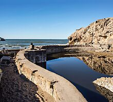 Sutro Baths by James Watkins
