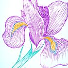 Iris in Ink  by Christine Chase Cooper