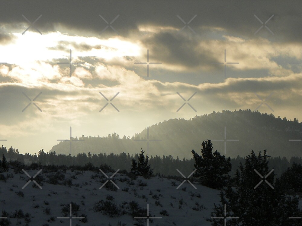 Frozen Sunbeams by Betty  Town Duncan