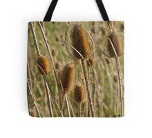 Dried Thistle Tote Bag