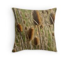 Dried Thistle Throw Pillow
