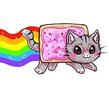Nyan Cat Photographic Print