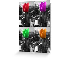 multi-coloured tulips Greeting Card