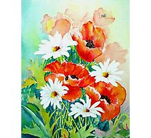 Poppies and Daisies Photographic Print