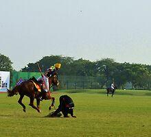 Balancing on pole by Ikramul Fasih