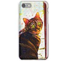 Kitten at the Door iPhone Case/Skin