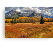 Golden Colors of Fall Canvas Print