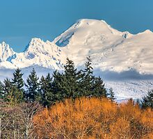 Mount Baker by Jim Stiles