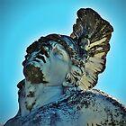 Achilles......... by Sarah-jane Monro