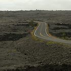 Road through the Lava Rock by satsumagirl