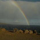 Hawaiian Rainbow by satsumagirl