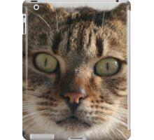 Beautiful Eyed Tabby Cat iPad Case/Skin